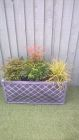 Garden planter with Astilbie Nandinia Domestica and Carex testacea<br /><br />www.heysgroundcare.co.uk