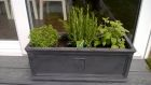 RHS planter complete with herbs Thyme Rosmarinus and Basil<br /><br />www.heysgroundcare.co.uk